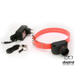 Dogtra StB - Beep L