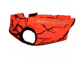 ASTRO Le Chien Defender T50
