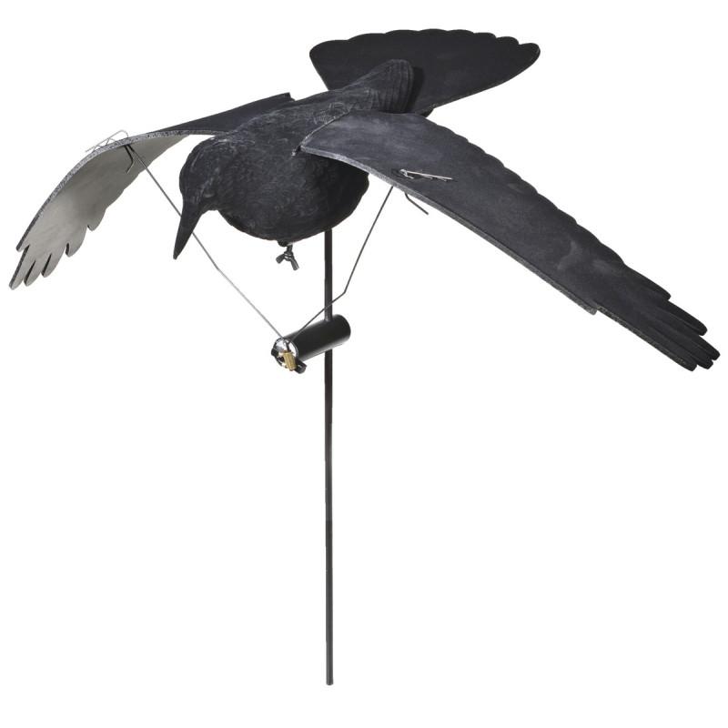 Appelant Corbeau Électrique