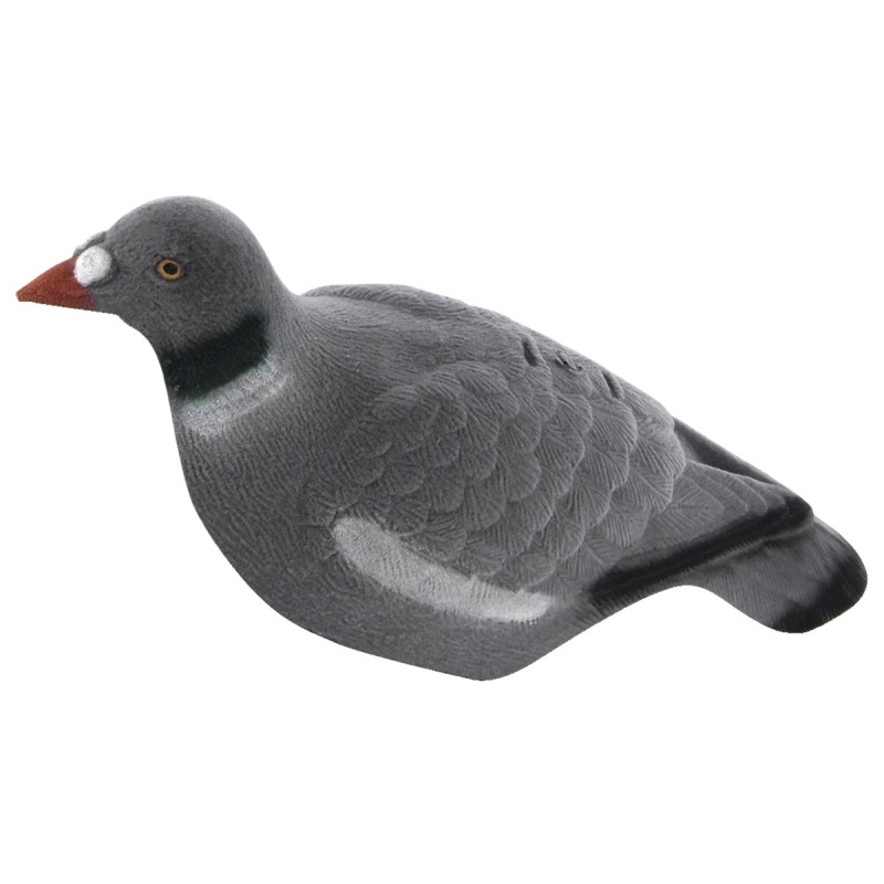 Appelant Pigeon Demi-Coque