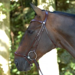 Bridon Dy'on muserolle allemande (dressage collection)