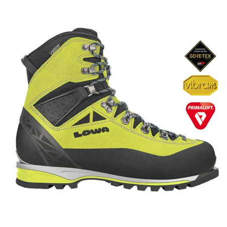 Chaussures Alpine Expert GTX Lime/black