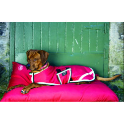 Couverture Amigo imperméable Dog Rug Horseware