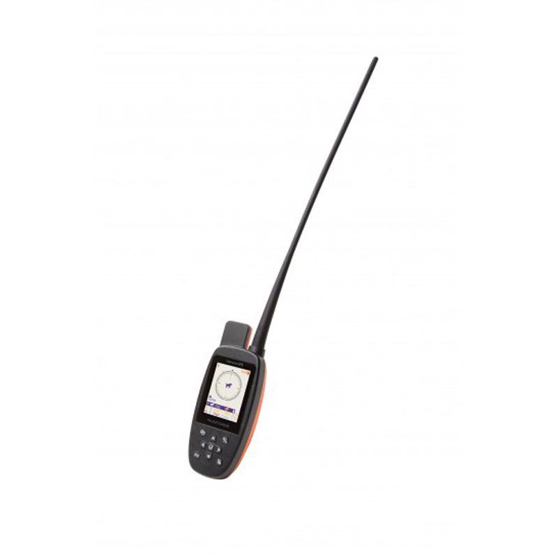 PACK REPERAGE DRESSSAGE CANICOM GPS