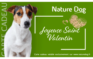 Saint Valentin Nature Dog